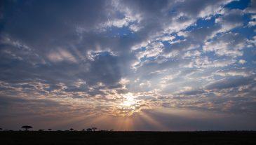 African Sunset over Serengeti NP Tanzania