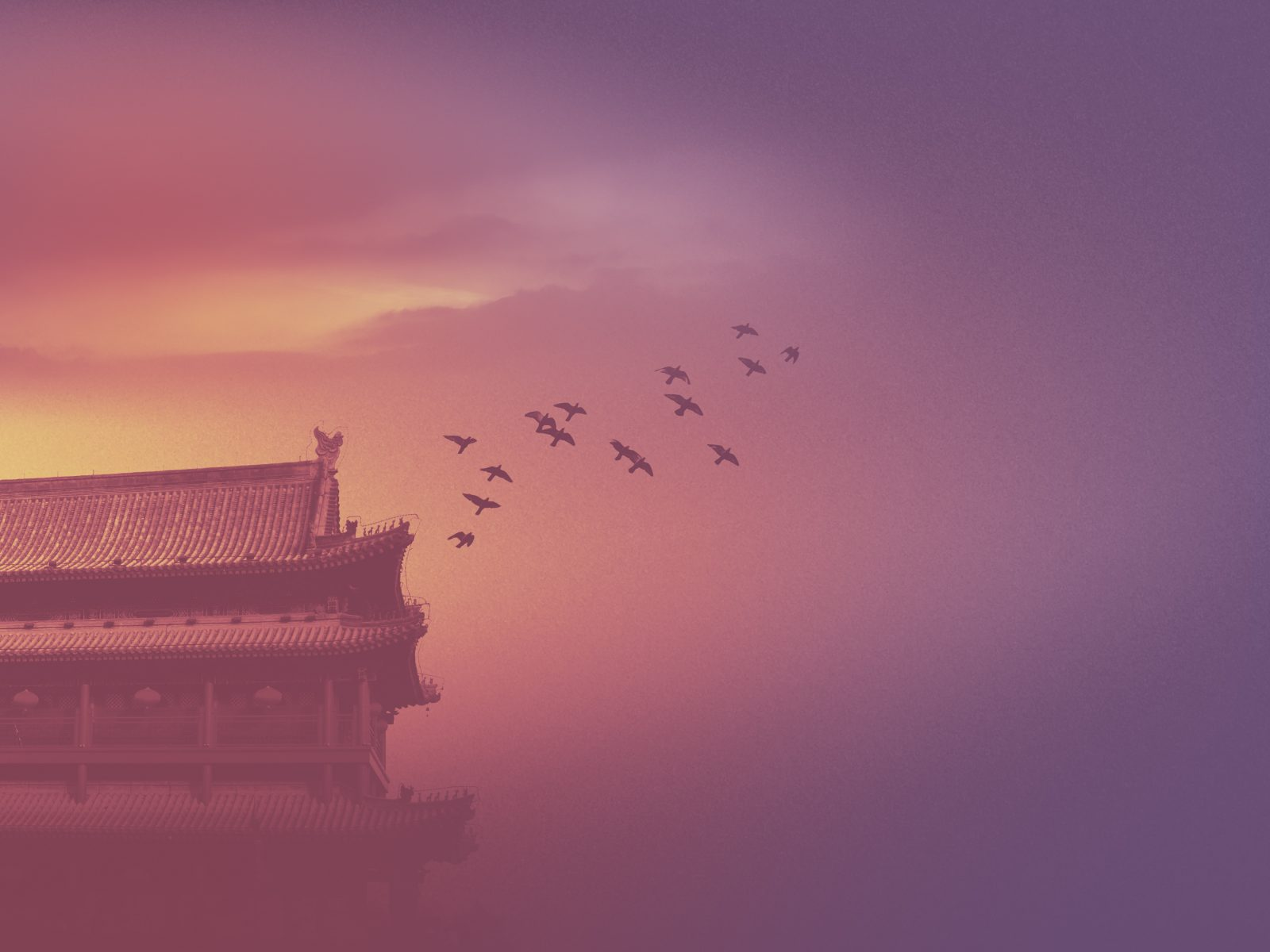 Asian historic building silhouette mystic scene birds