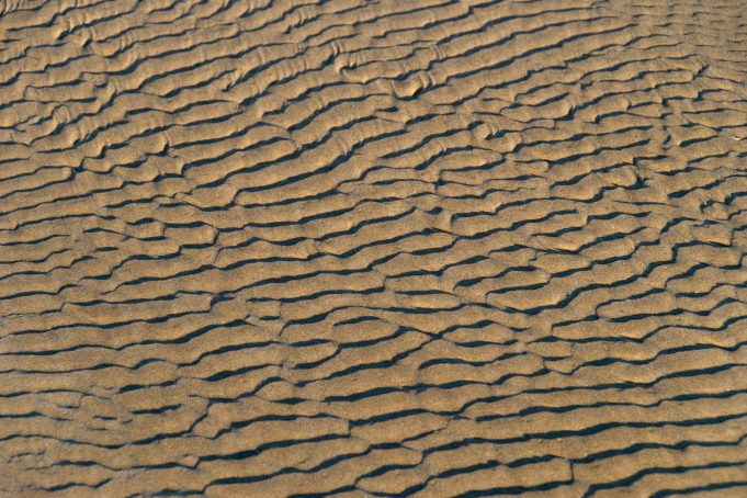 Beach Mud Ripples
