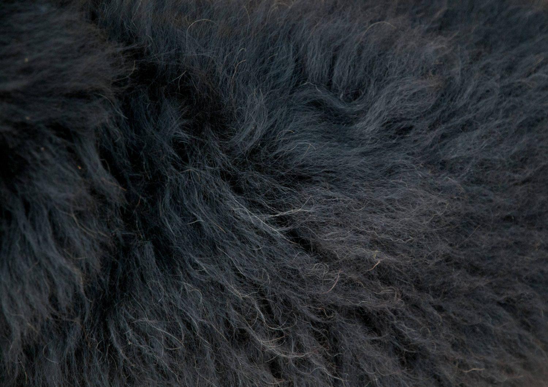 Black sheep fur texture