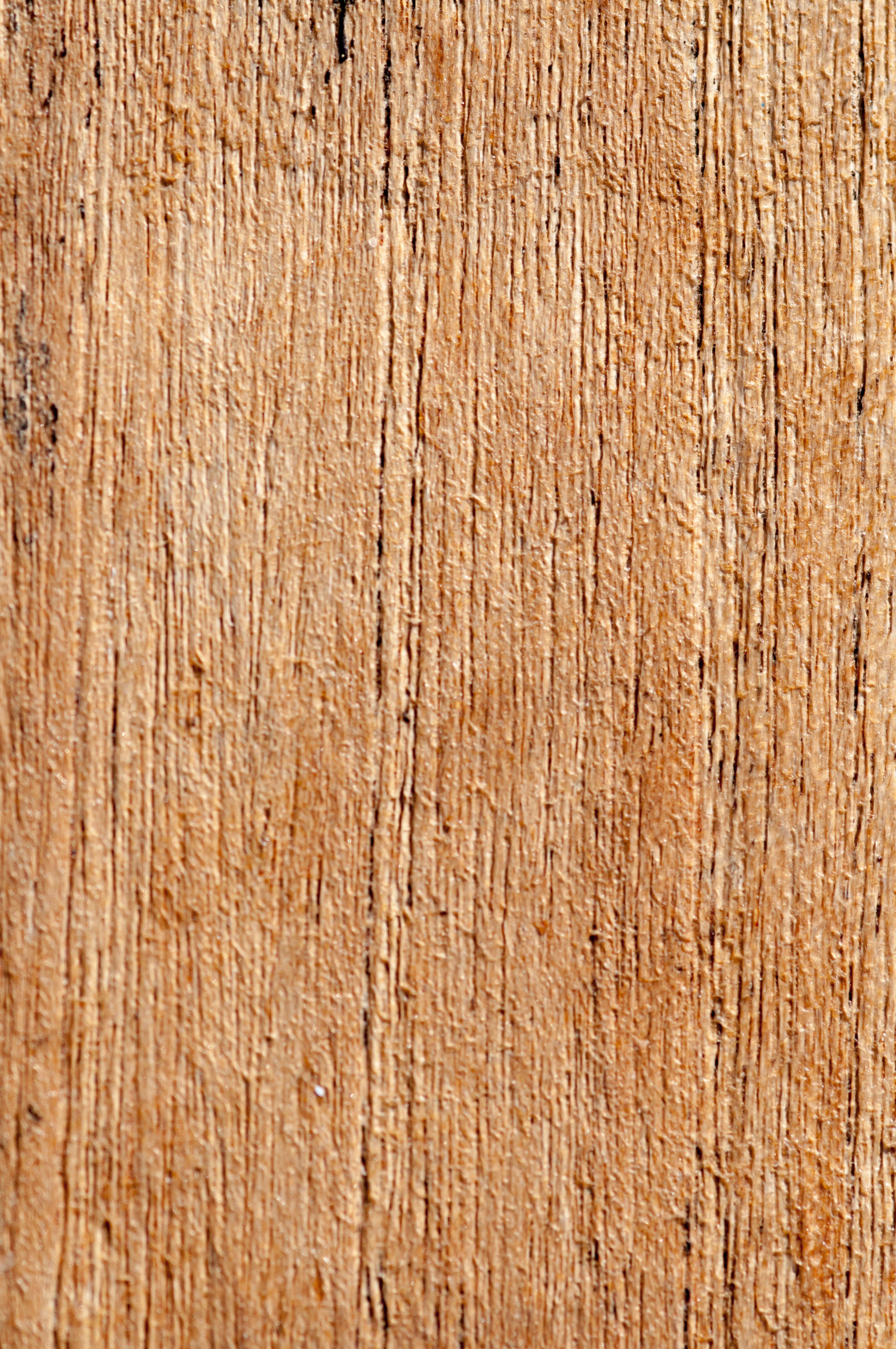 Blank pattern Wood Texture Close-Up