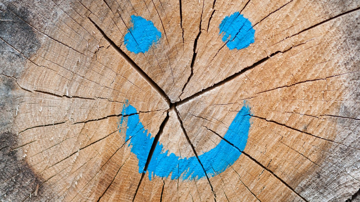 Blue smiley face on a wooden log