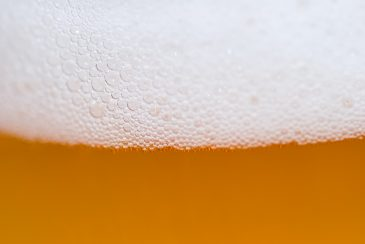 Close-up of draft beer foam