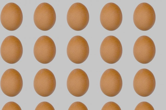 Eggs Wallpaper Pattern