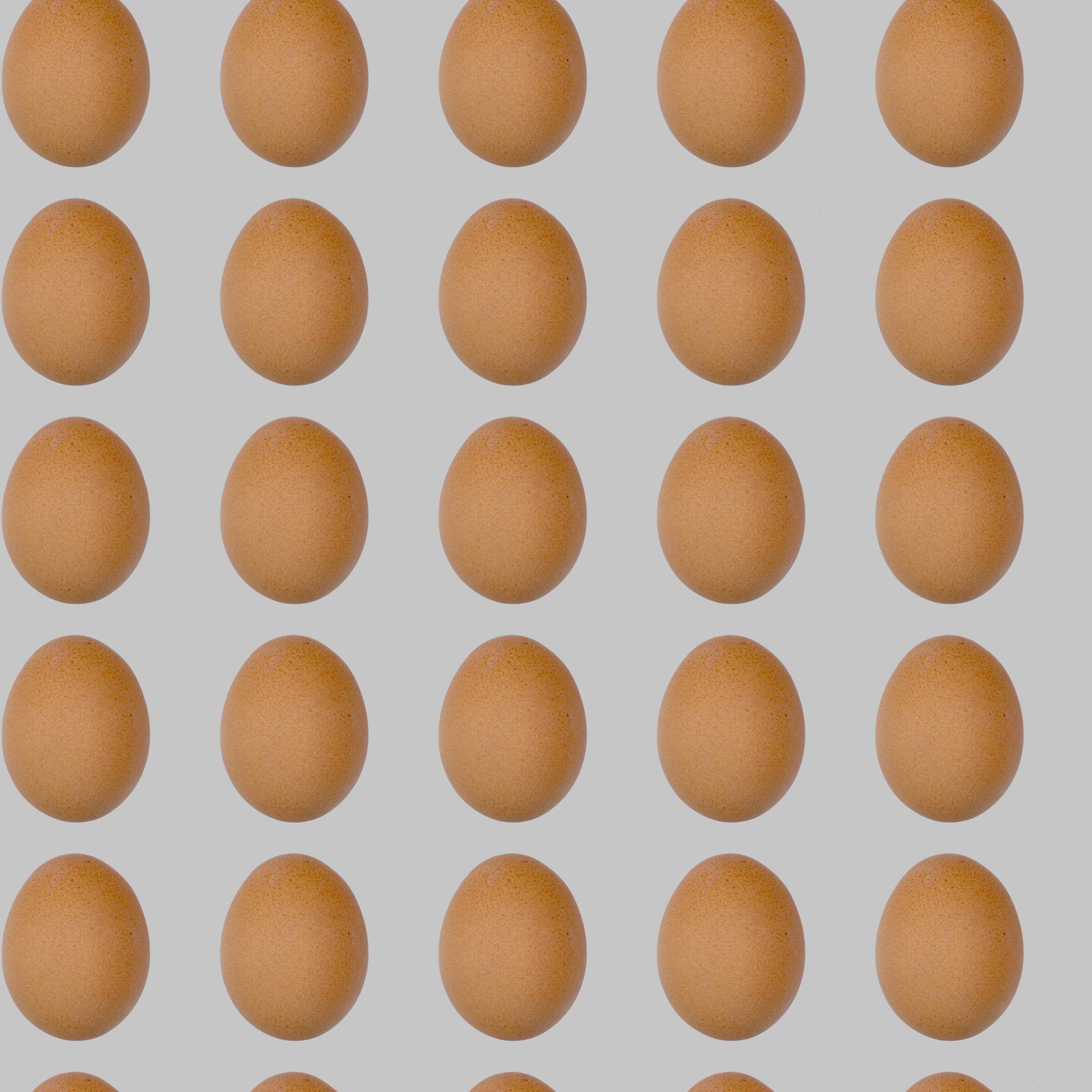 Eggs Wallpaper Pattern