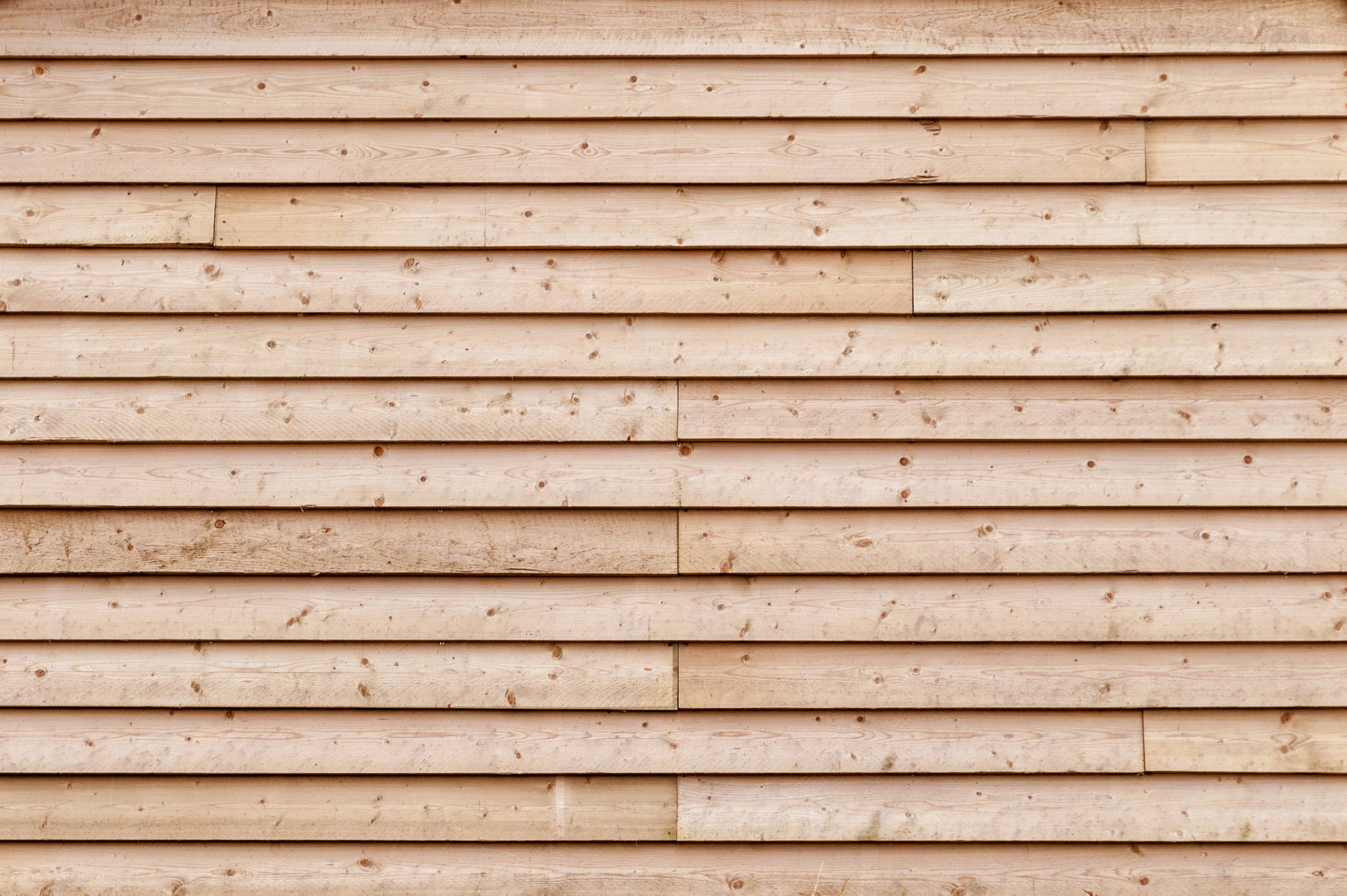 Free stock photo of wood timber oak lumber