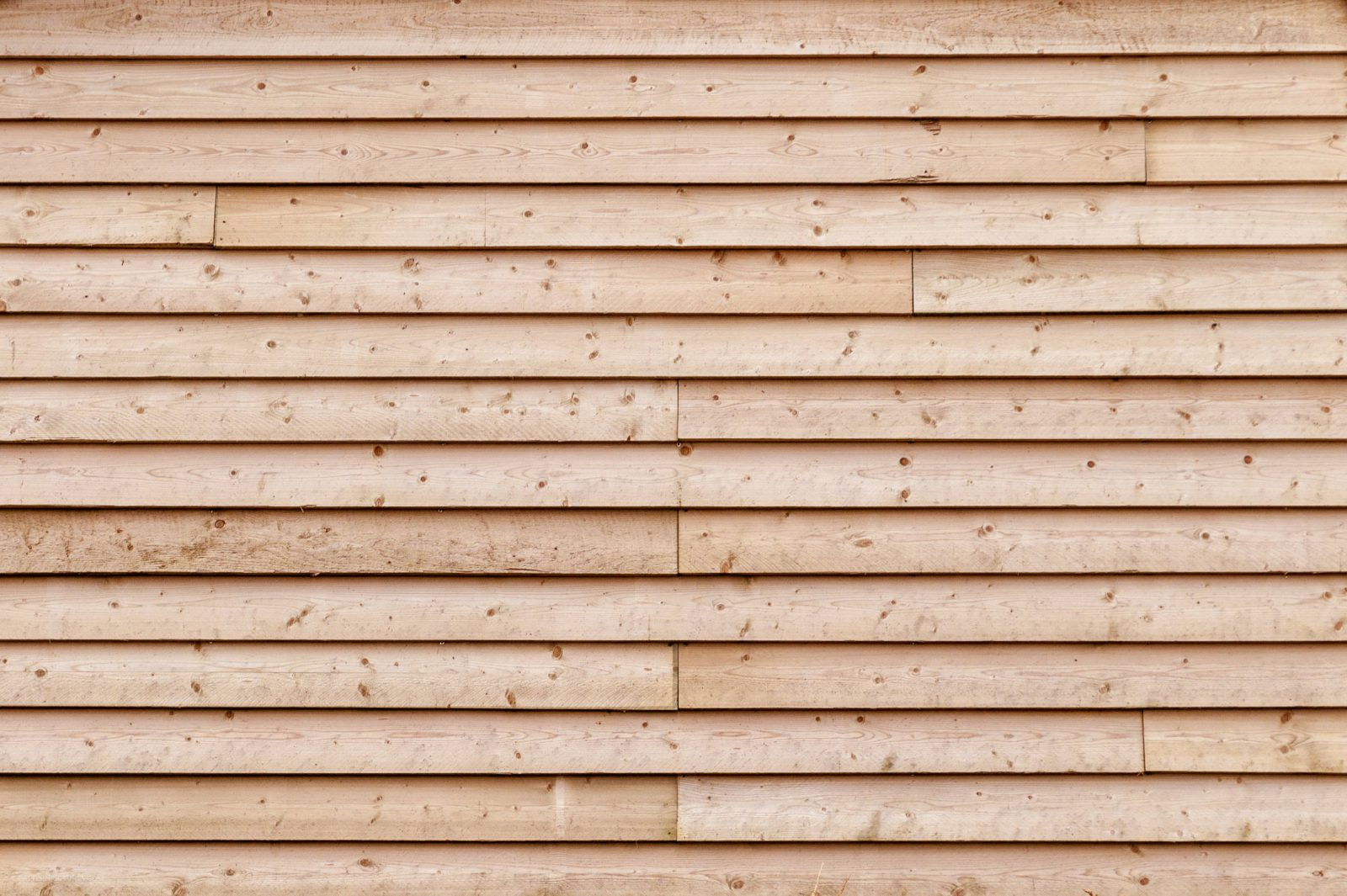 Free stock photo of wood timber oak lumber