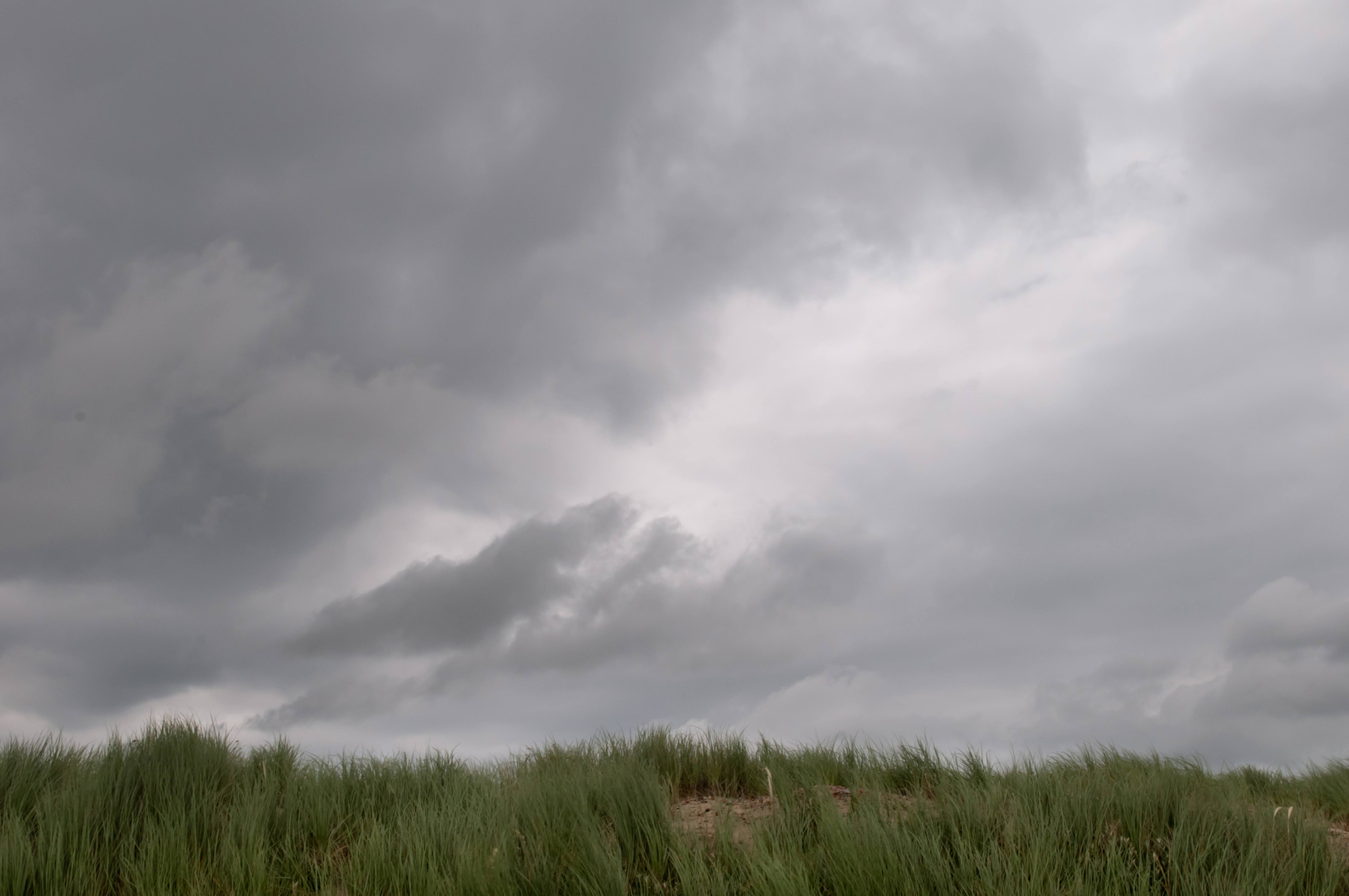 Grass and grey cloudy sky