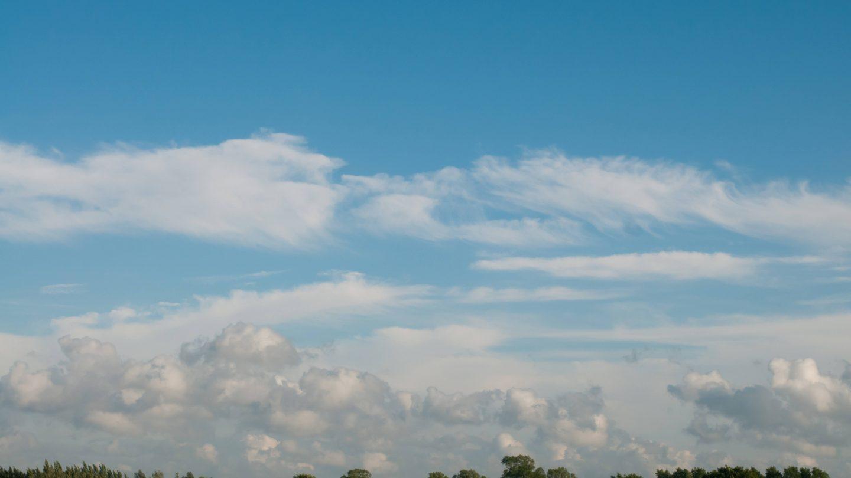 Green treeline and cloudy blue sky