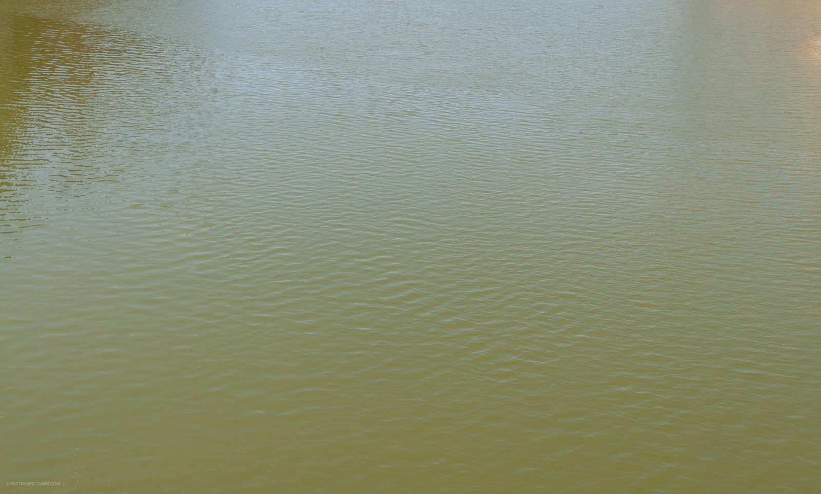 Green water calm surface