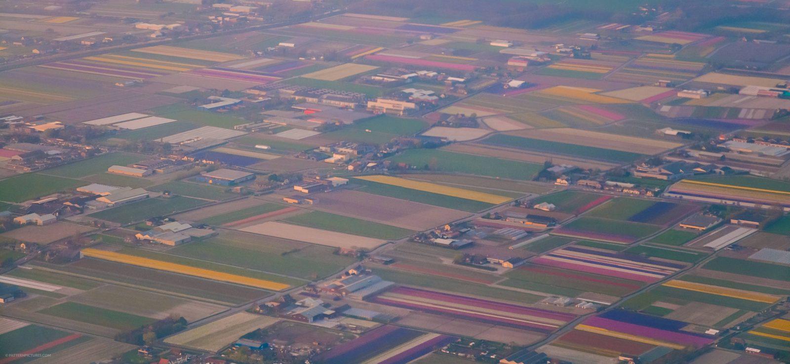 Landscape Netherlands airphoto flowerfields