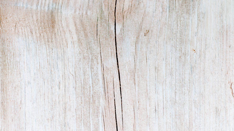 Light wood texture macro photo