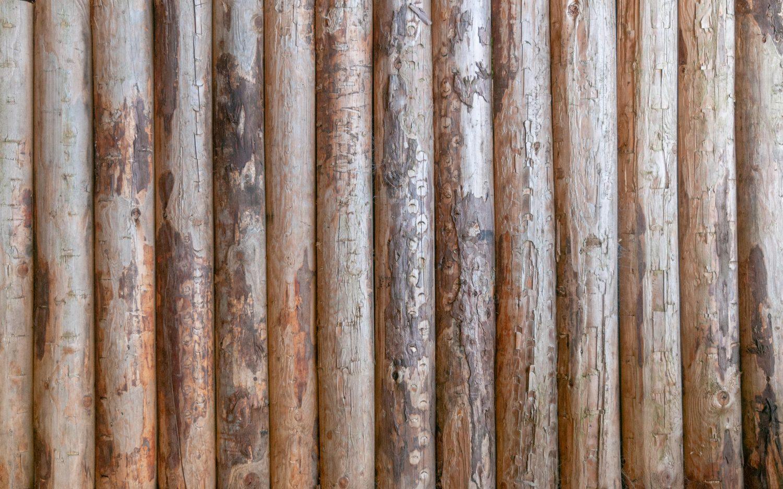 Log cabin wood wall texture