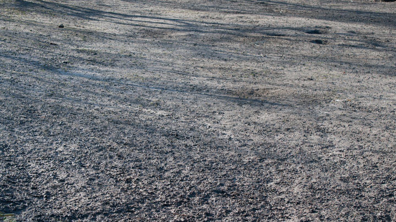 Mud dirt sand background