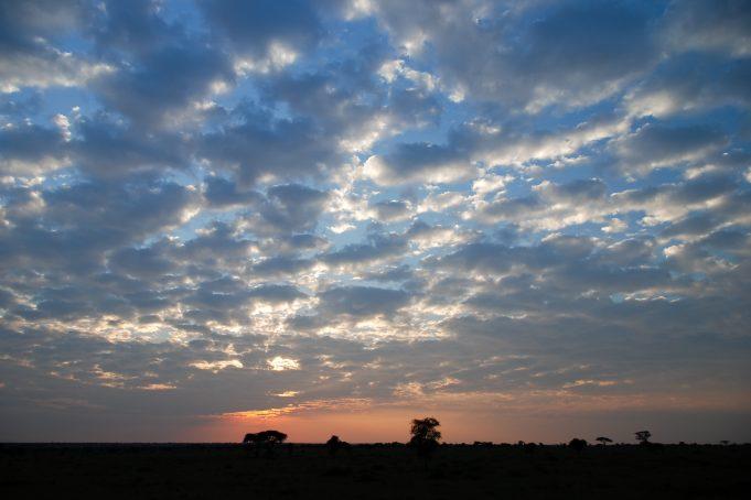Serengeti blue low-level cloudy sunrise sky