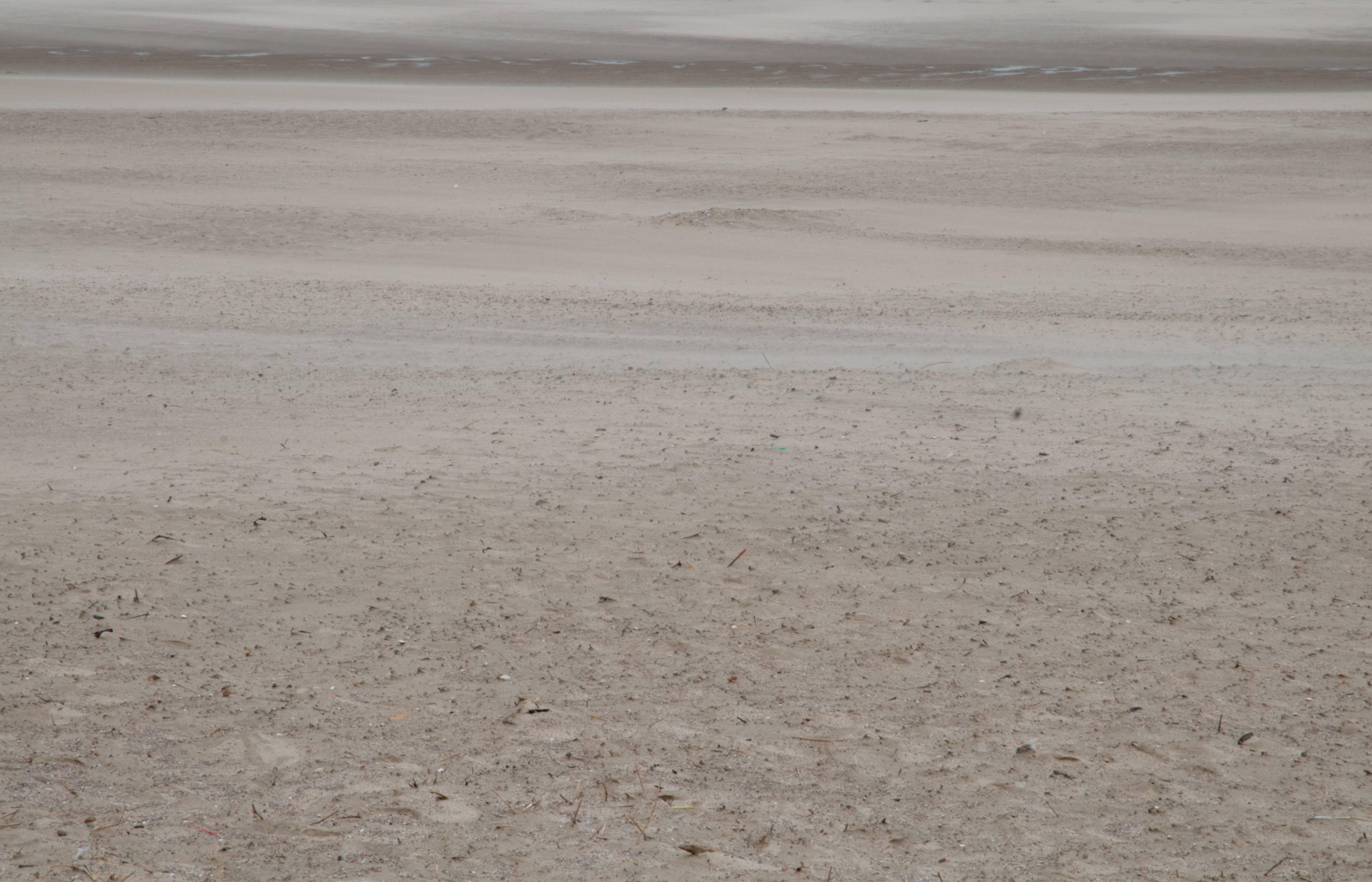 Beach Sand Storm background