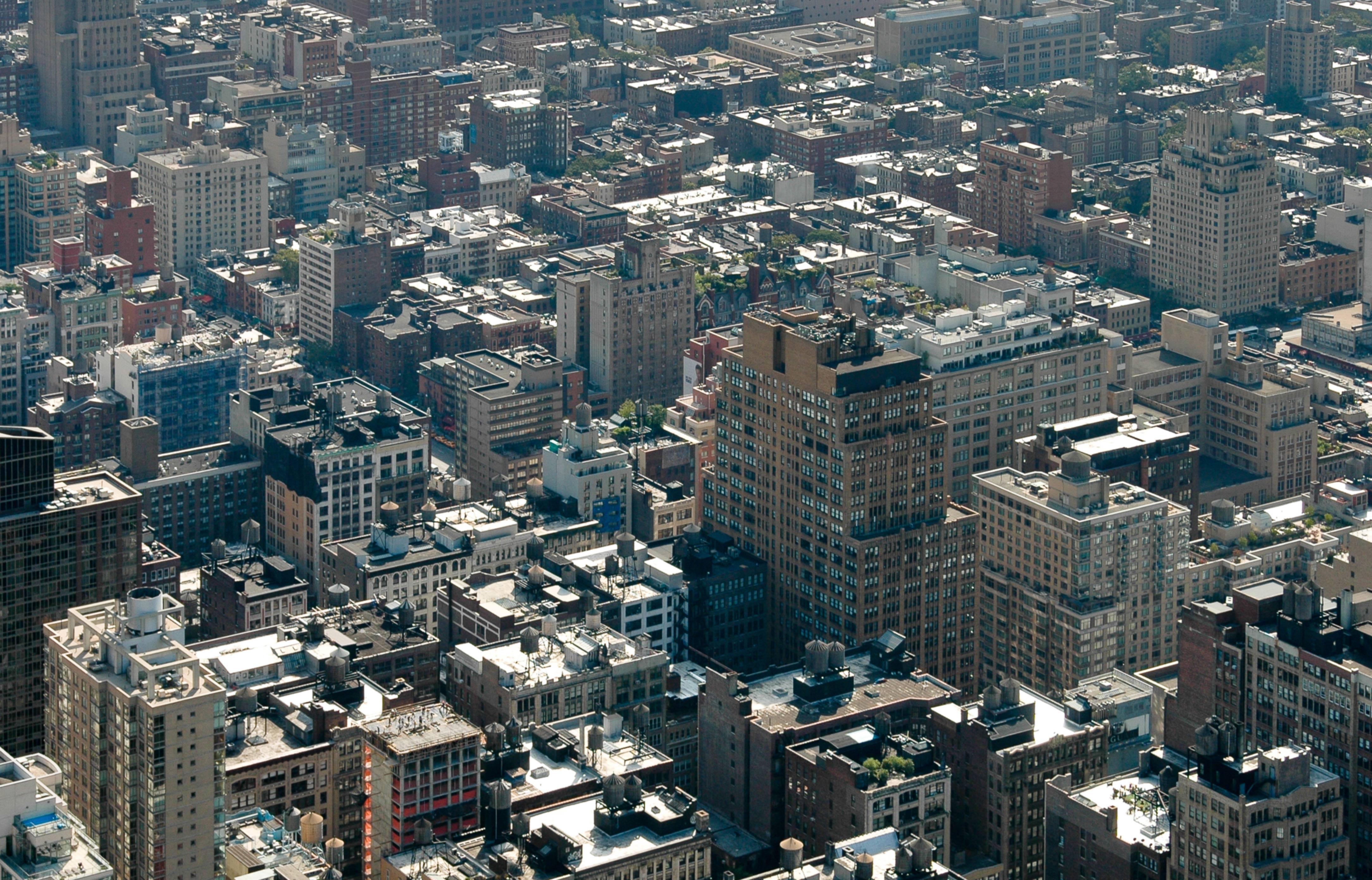New York Concrete Jungle