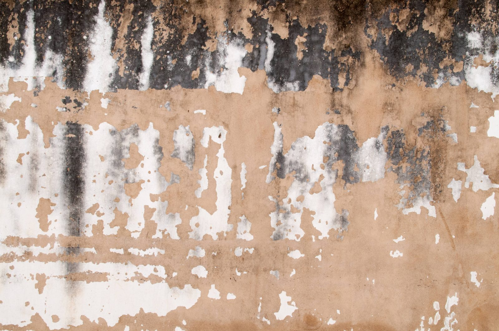 Concrete Grunge Wall