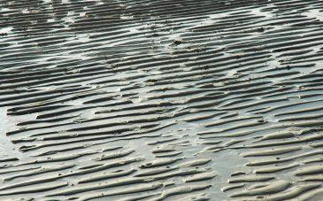 Wet Sand Beach Wrinkles