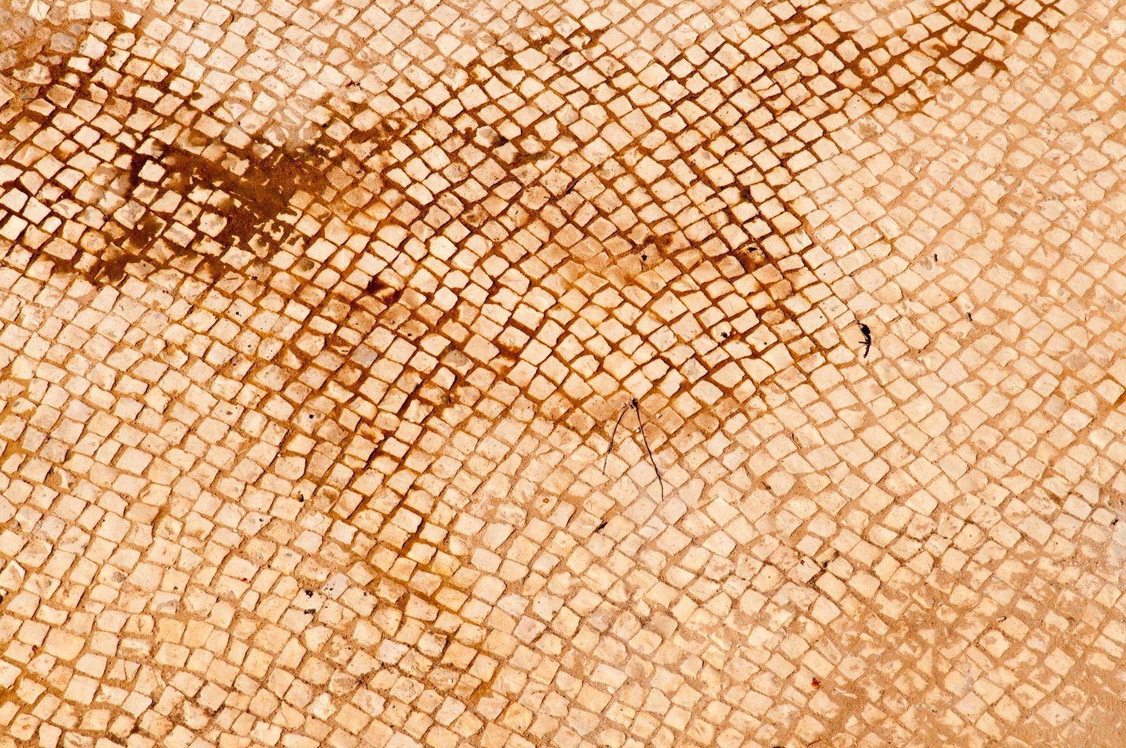 Small Mosaic Dirt Floor