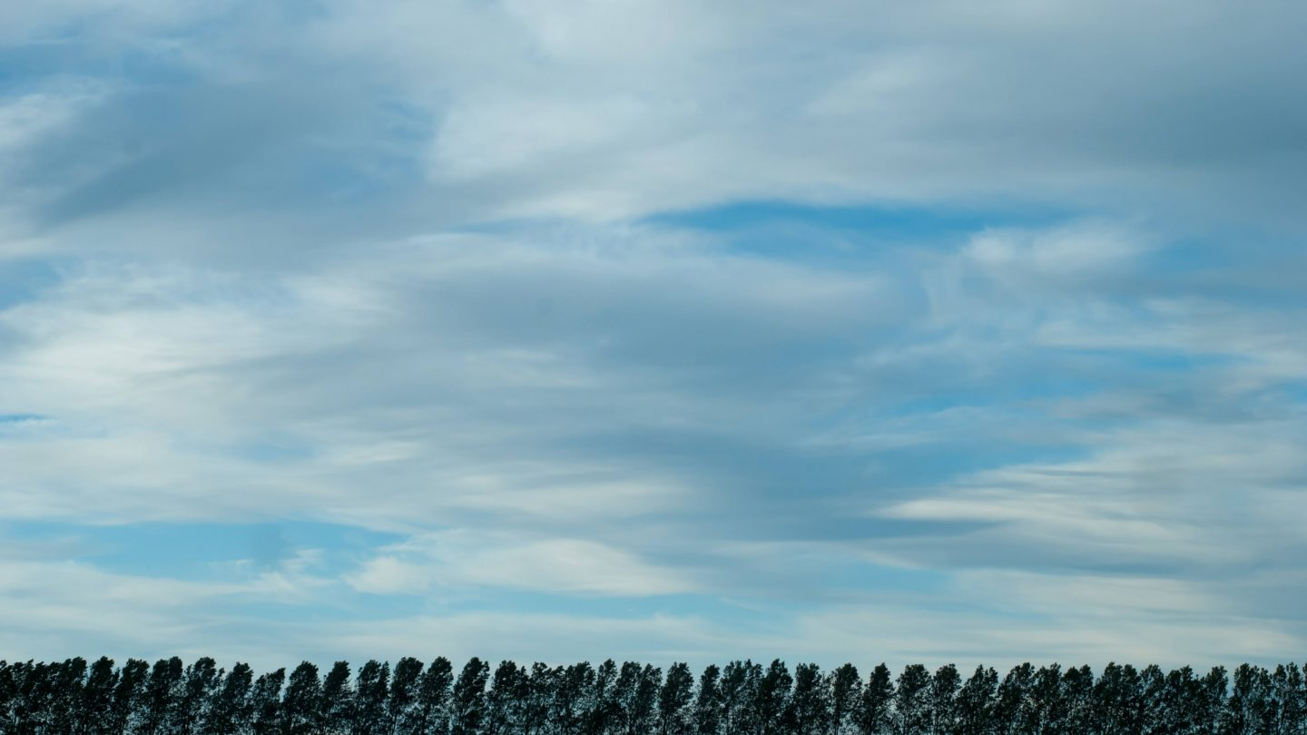 Clouds and Line of Trees