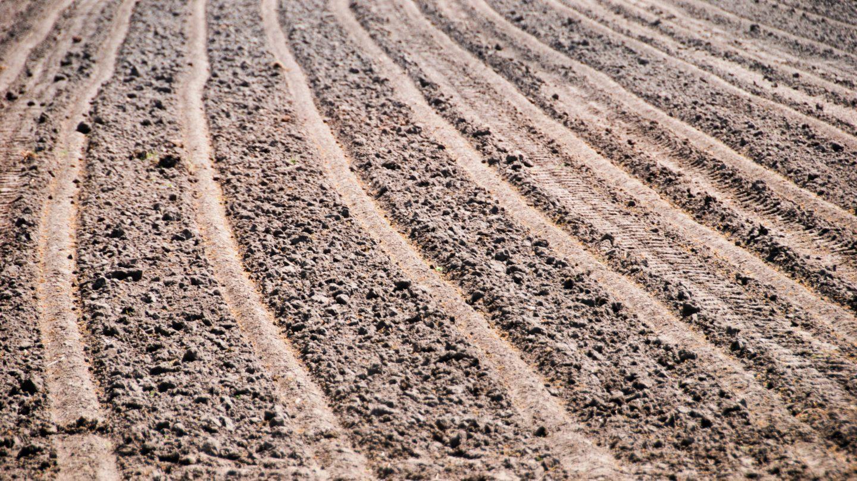 Plowed Farmland