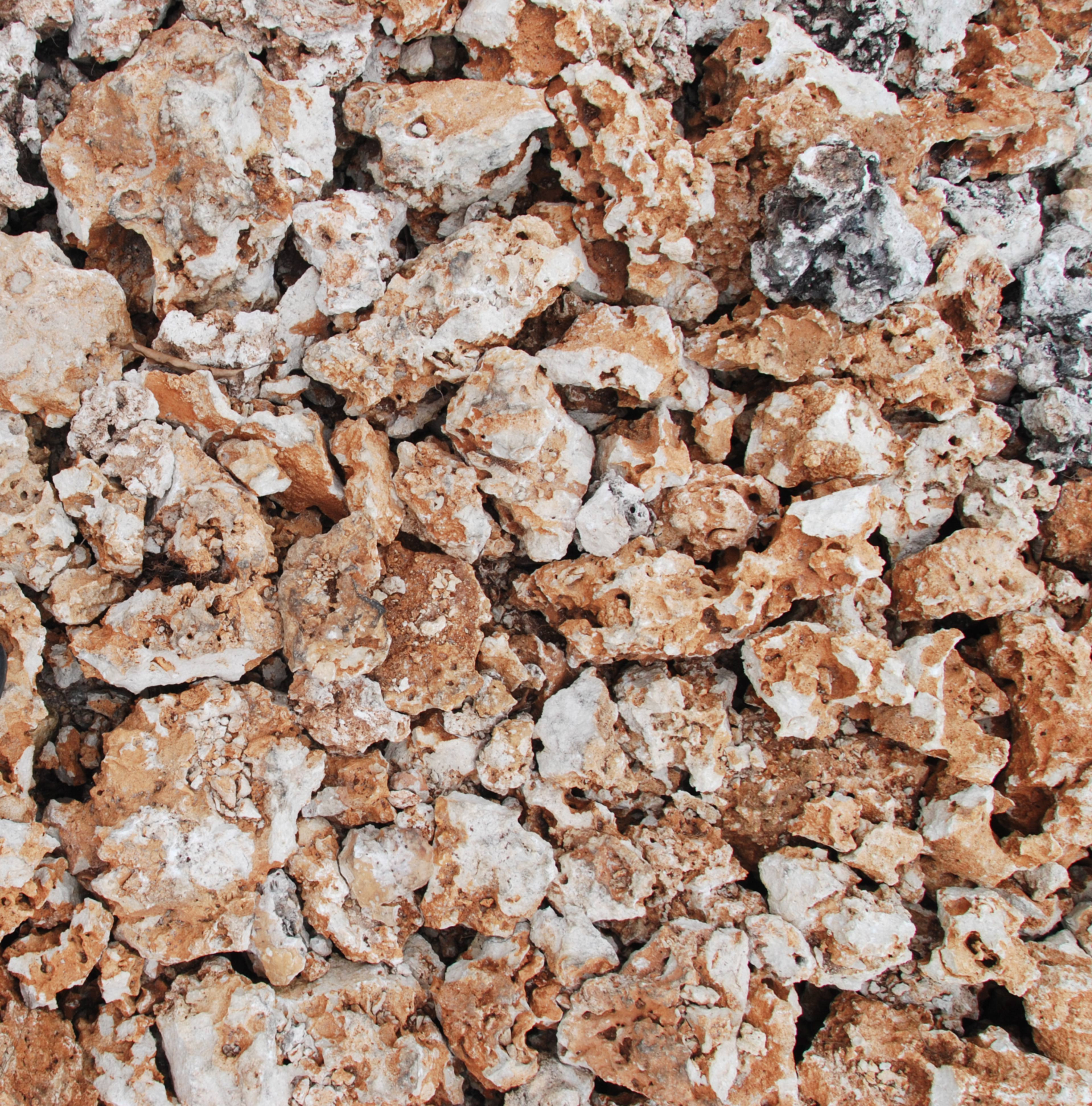 Beach rocks texture