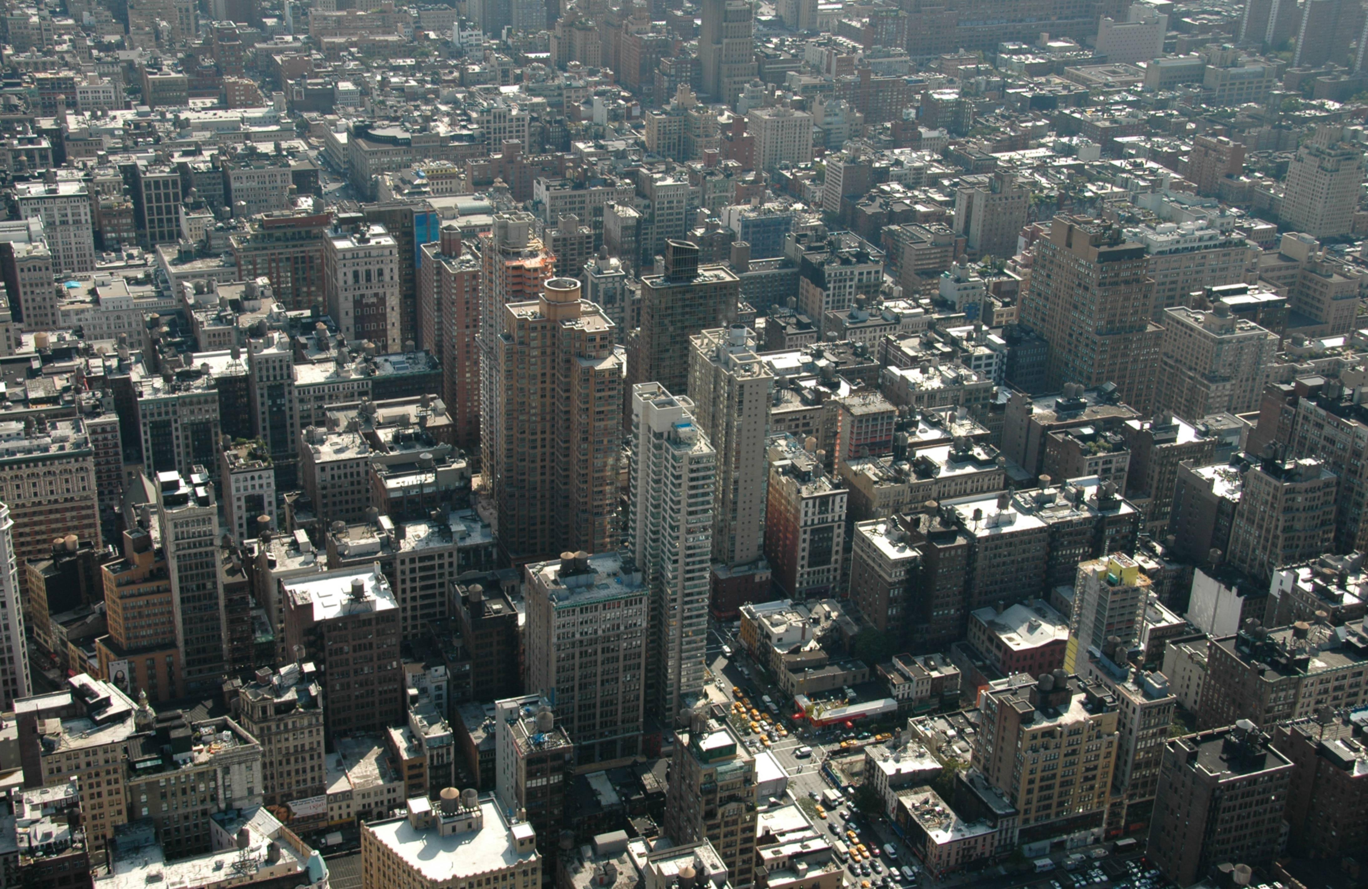 Concrete Jungle New York City