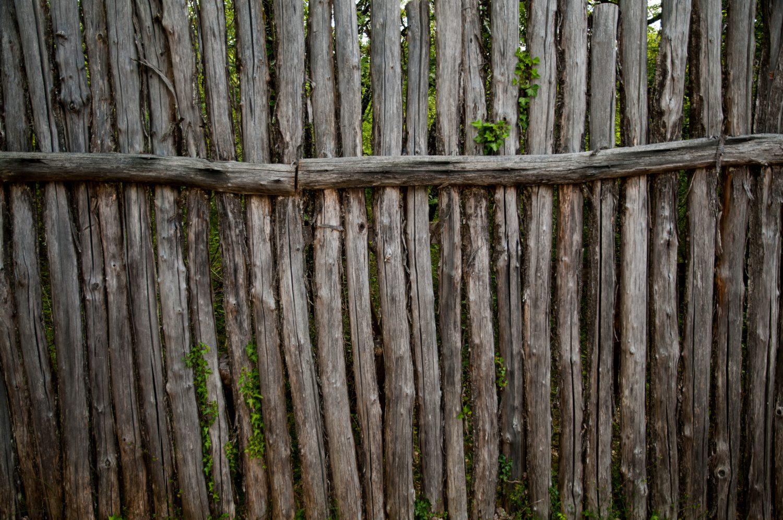 Prehistoric wooden fence logs