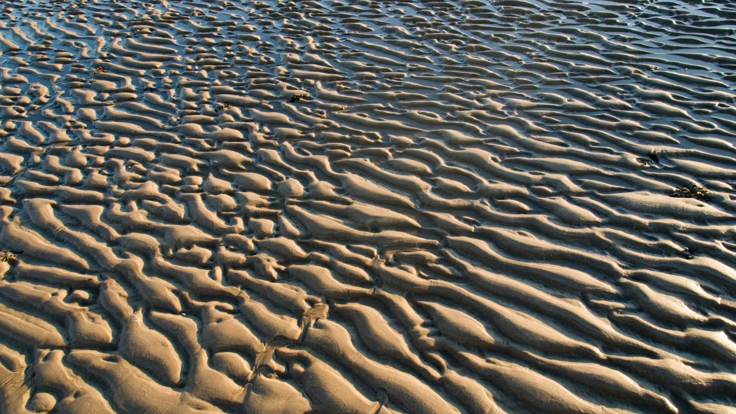 Water Rippled Sand