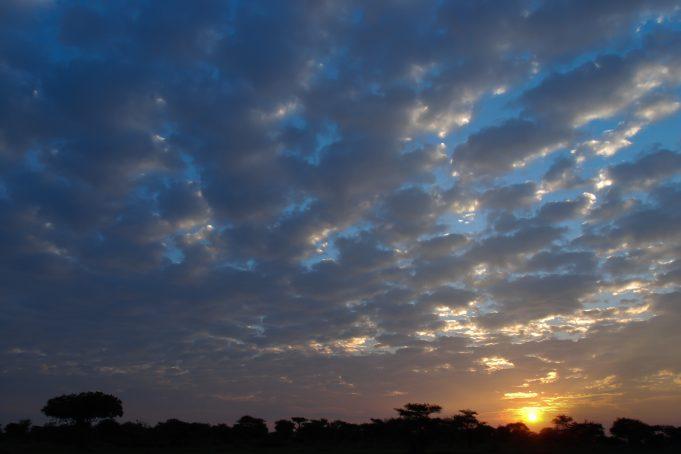 Serengeti sunrise clouds and landscape silhouette