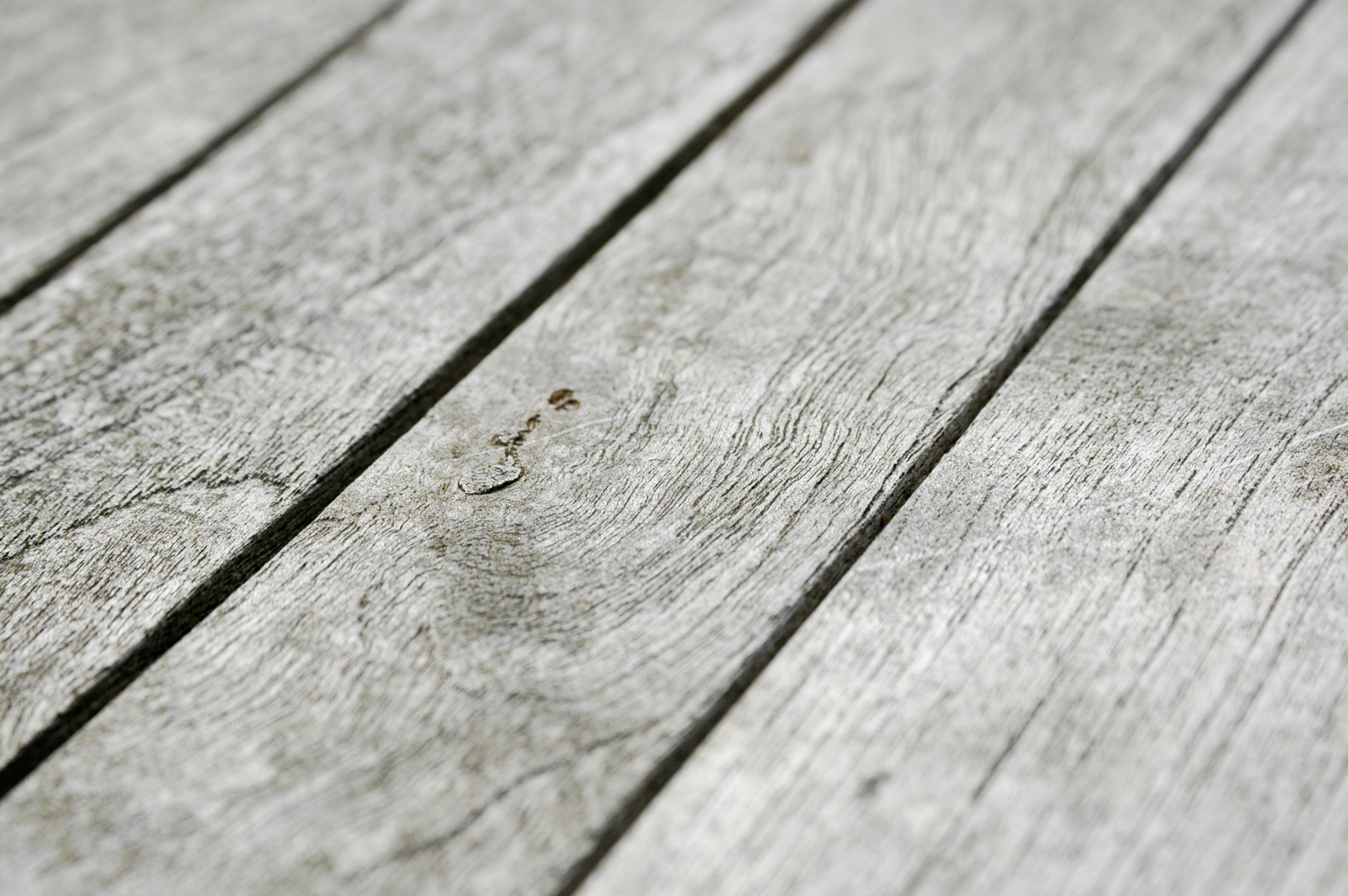 Short Focal Depth Wood Structure