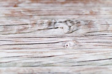 Wood texture background with shallow depth of field