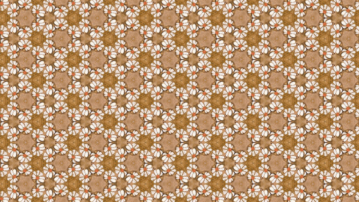 Stone Wall flowers seamless texture