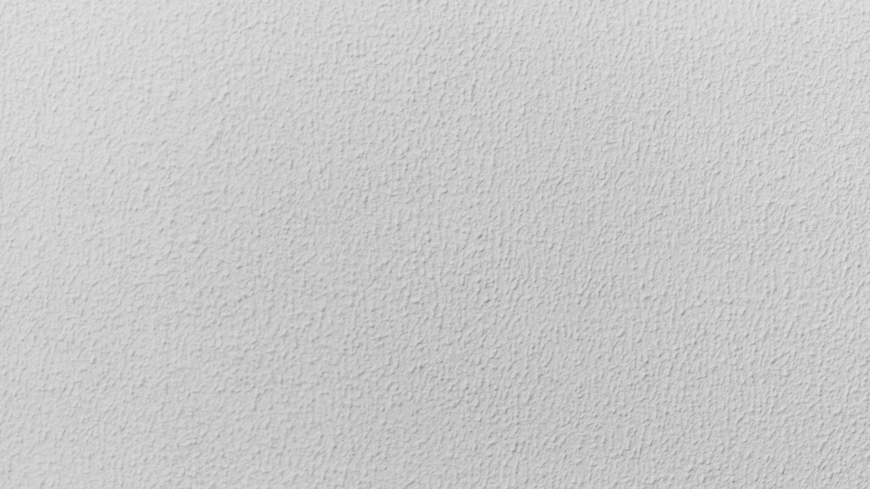 Subtle Plaster Texture White Wall