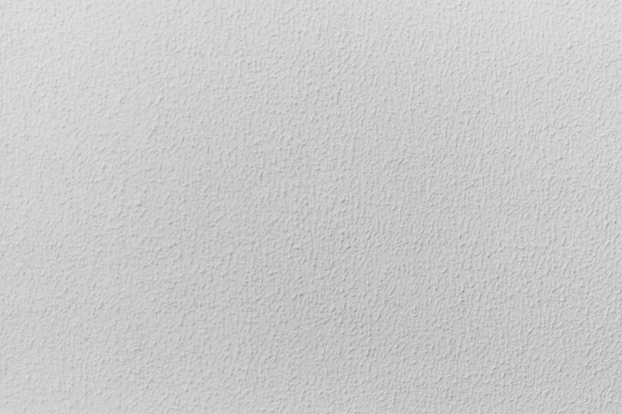 Subtle Plaster Texture White Wall