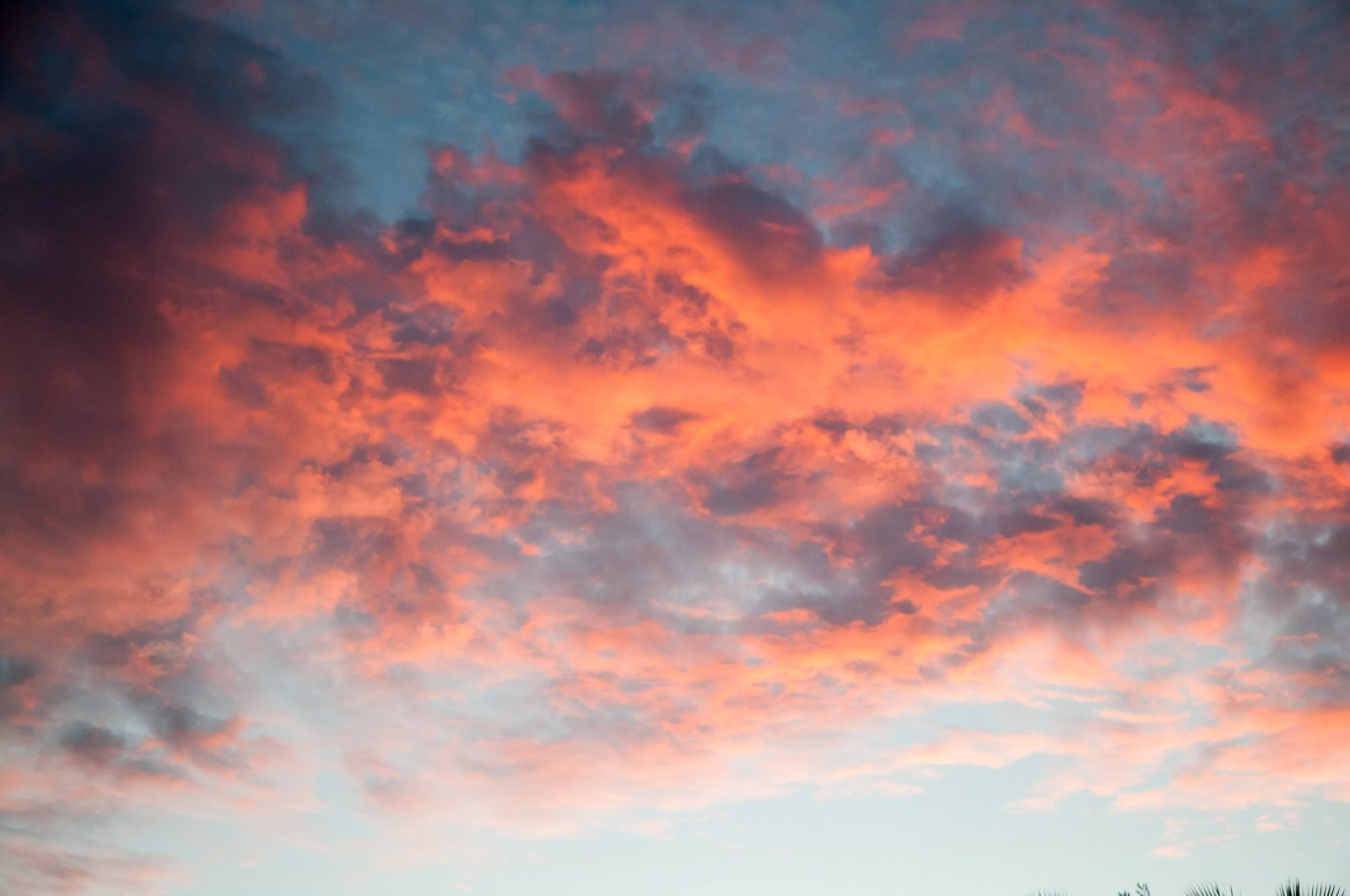 Sunset Reflected on Orange Bright Lit clouds
