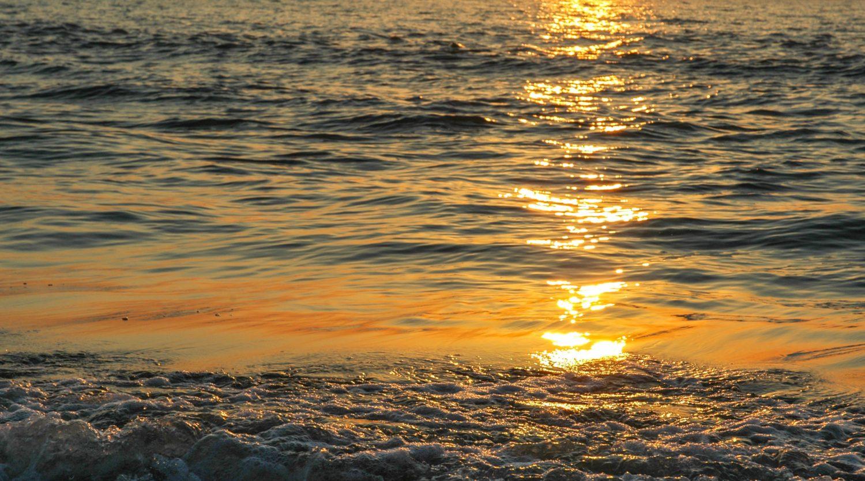 Sunset ocean shore beach waves