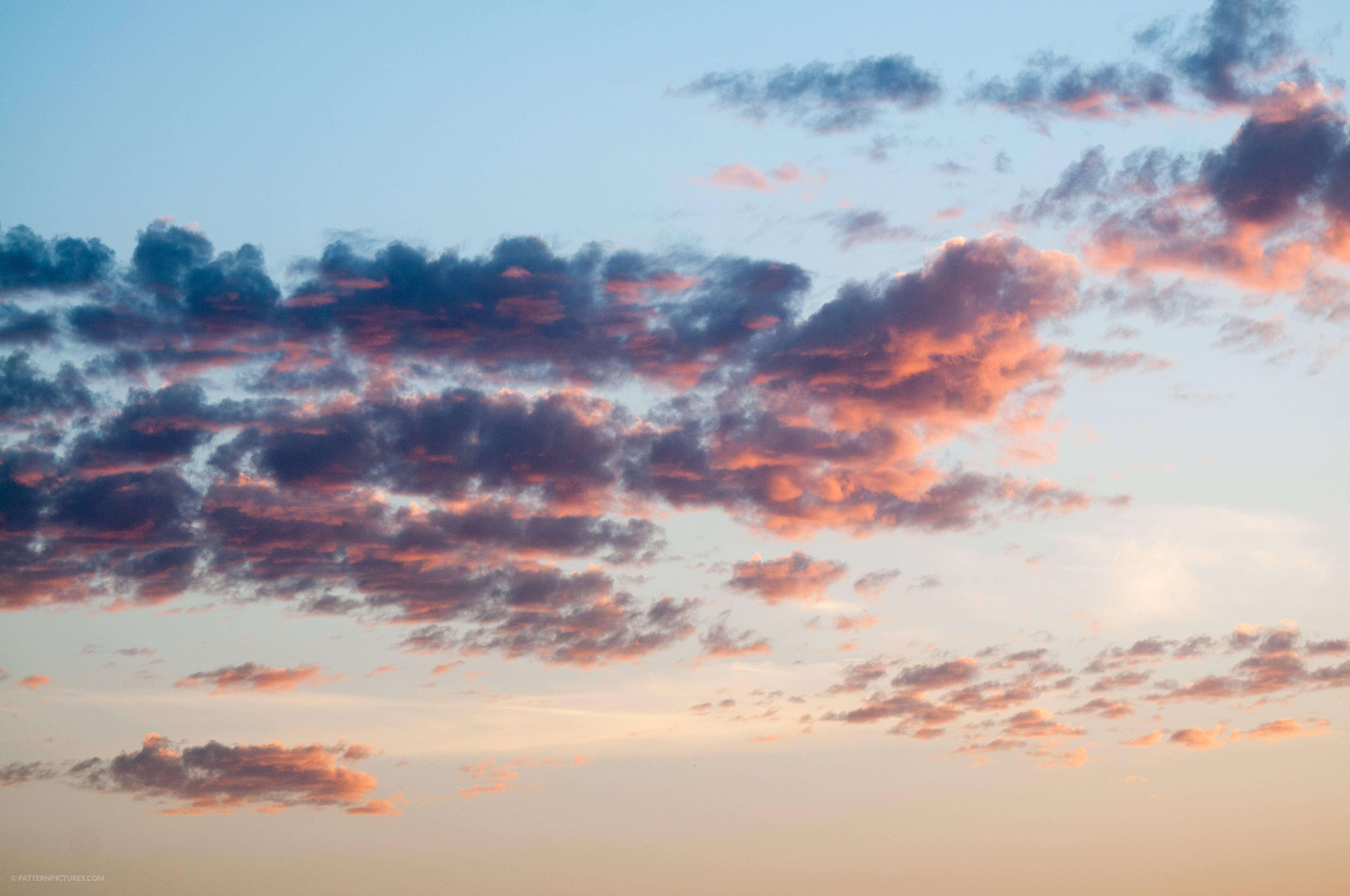 Tiny dark clouds at sunset light