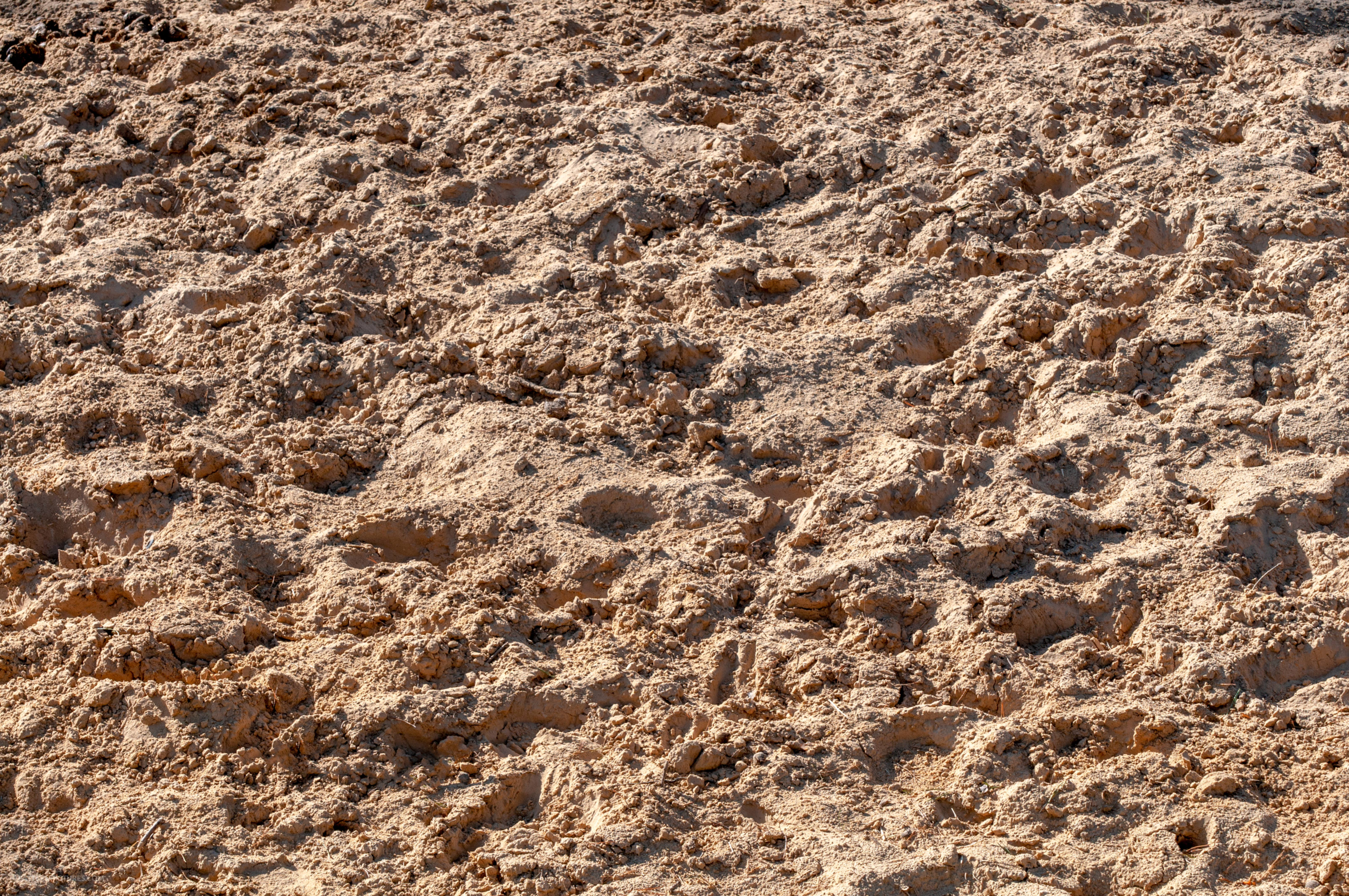 Trampled sand texture free photo