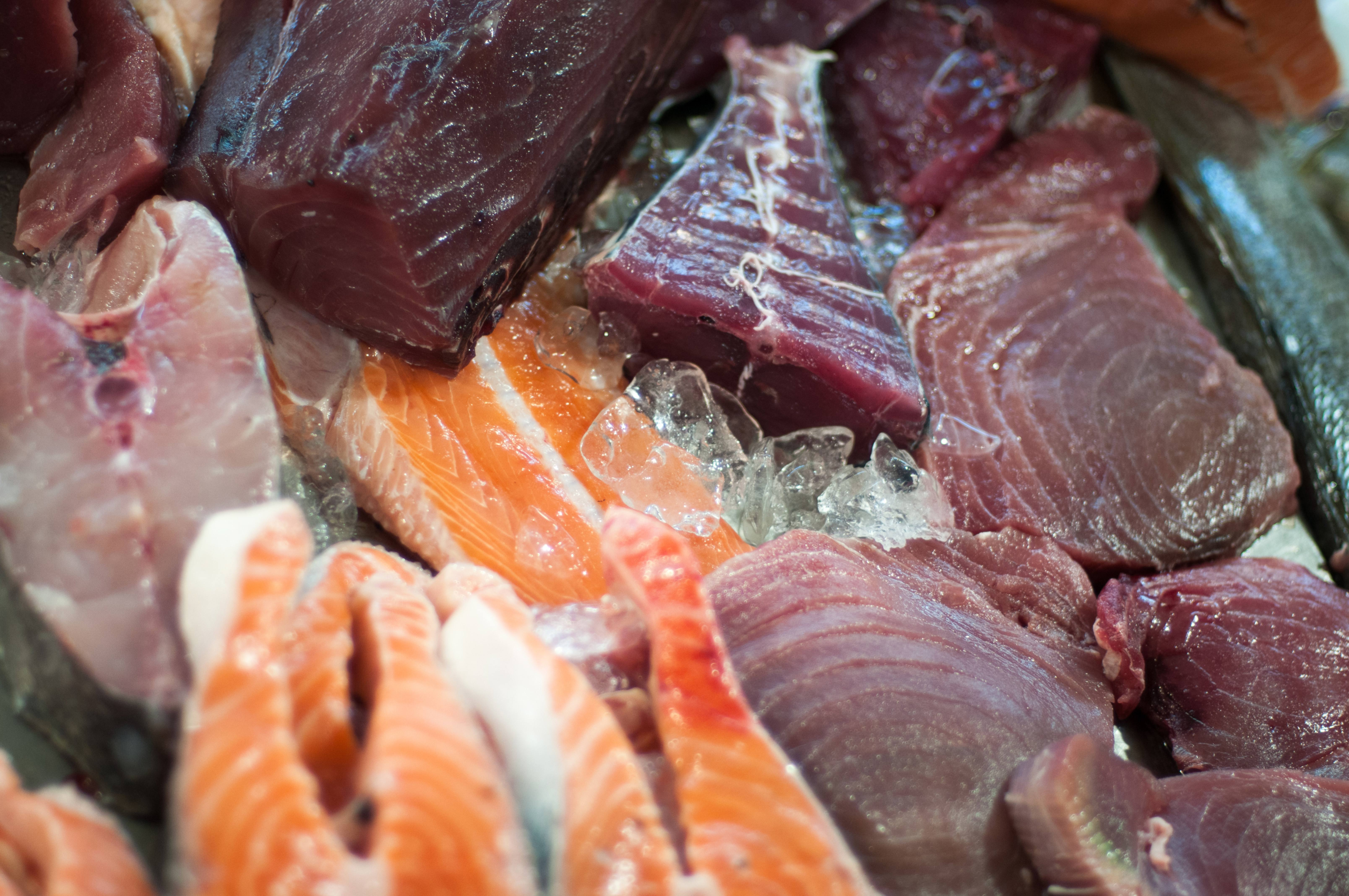 Variety of colorful fresh fish on ice at fishmarket