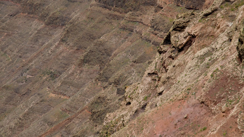 Vulcanic hillside background