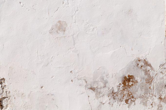 White Plaster Grunge Wall