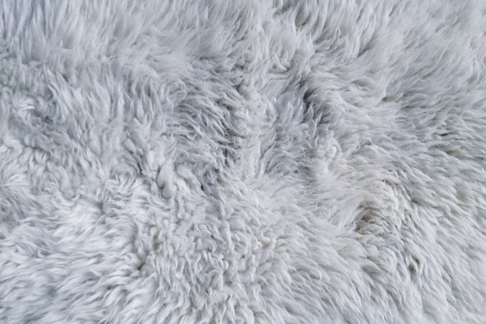 White fur rug texture