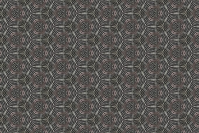 Zebralicious pattern pictures