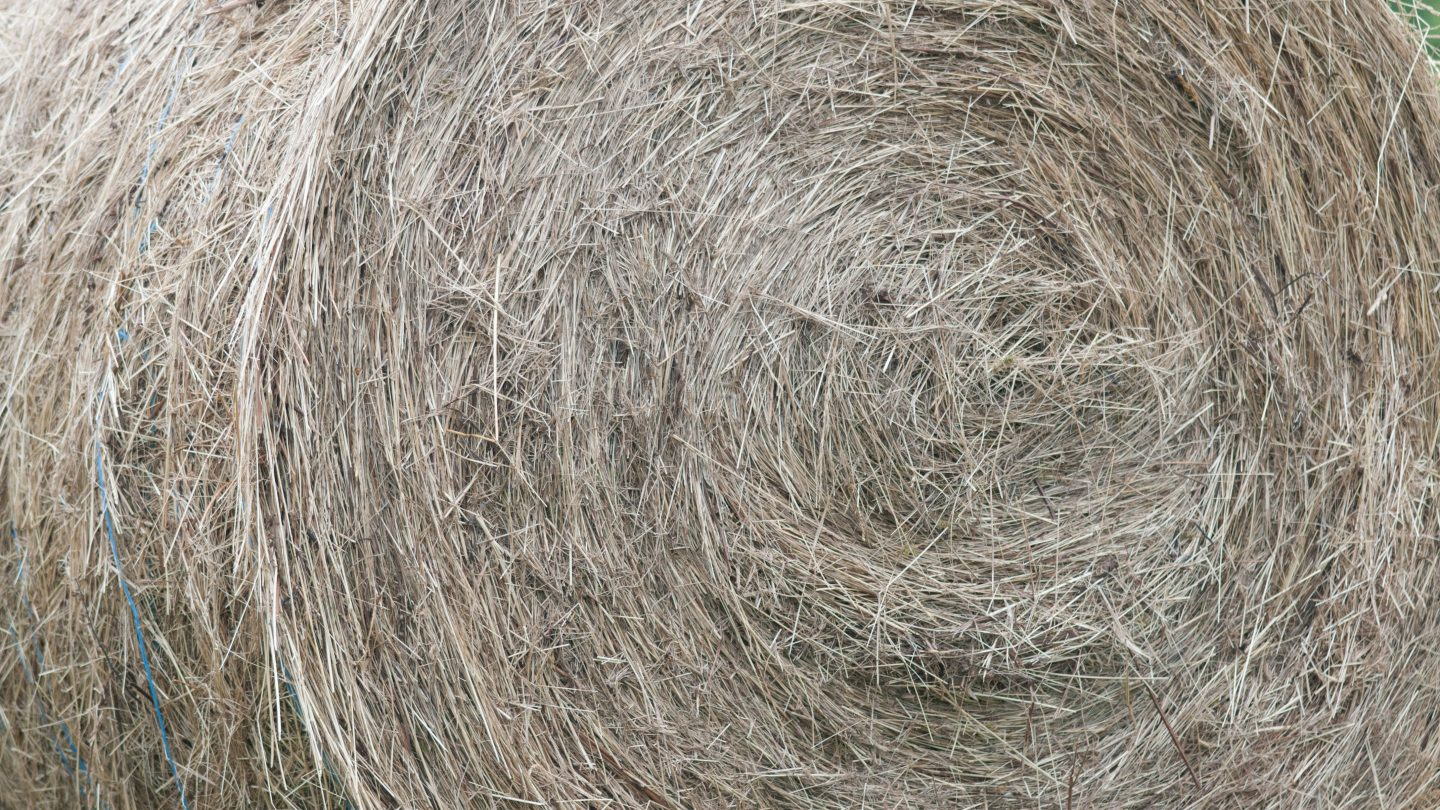 Dried hay bale full frame background