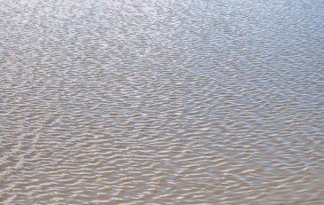 flat rippling freshwater texture