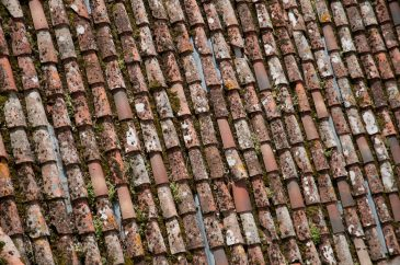 Old roof with moss
