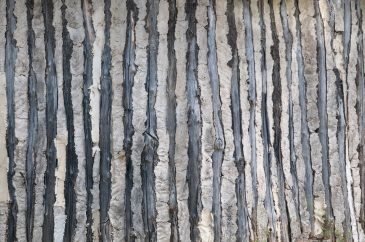 Prehistoric clay and wood wall