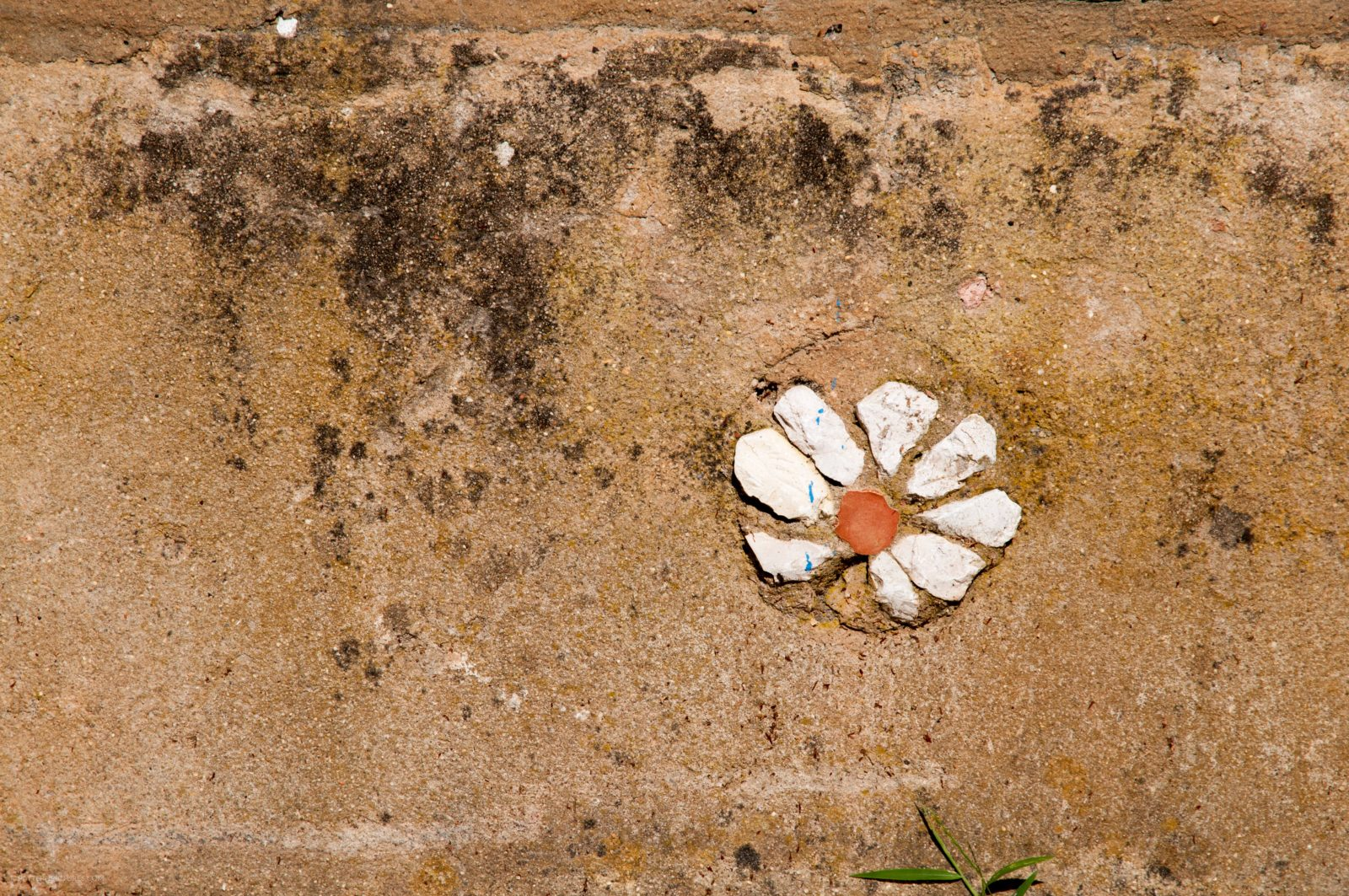 Wall flower stones